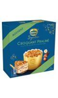 Dessert Glacé Croquant Praliné Nestle