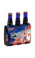 Bière Ice Berry SKOLL