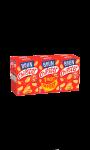 Biscuits apéritifs Chipster Belin