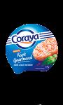 Rapé gourmand Coraya