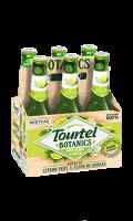 Bière sans alcool citron vert & fleur de sureau Tourtel Botanics