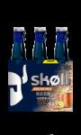 Bière Moscow Mule Skoll