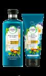 Shampoing ou après shampoing réparation Huile d'Argan Herbal Essences