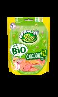 Bonbons Crocodil'Fizz bio Lutti