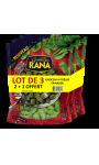 Pâtes fraiches gnocchi épinards à poêler Rana