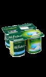 Yaourts bifidus aromatisés coco Carrefour