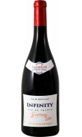 Vin Infinity Gamay VDF Pierre Jean Larraqué