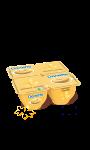 Crème dessert à la vanille Danette