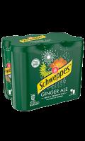 Boisson gazeuse ginger ale au gingembre Schweppes
