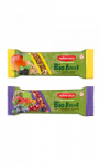 Barre de fruits Bio Break Noberasco
