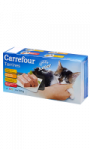 Terrines chat junior Carrefour