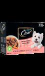 Pâté pour chien sélection en sauce Cesar