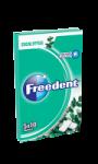 Chewing-gum à l'eucalyptus sans sucres Freedent