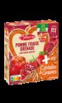 Dessert gourdes pomme fraise grenade céréales & graines Materne