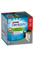 Friandises pour chien medium hygiène bucco-dentaire Purina Dentalife